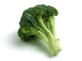 Broccoli_384_pretest